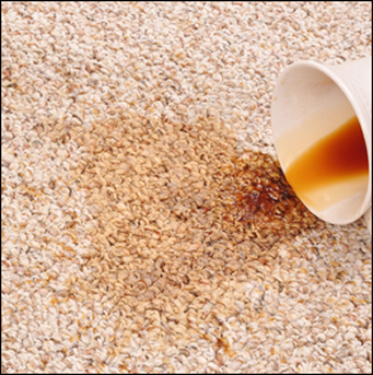 Stained Carpet - Carpet Cleaning